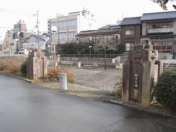 120320himawari1