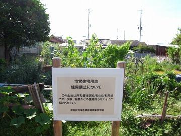 120715shimono4