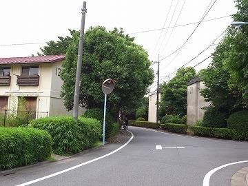 20120623asagaya6