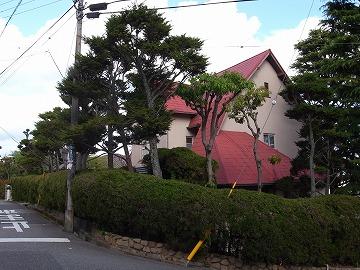 130421hibarigaoka16