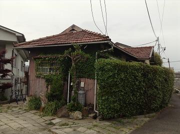 130420ishibashi1