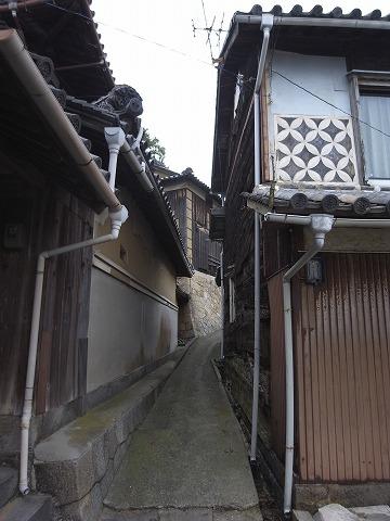 131102shishijima13