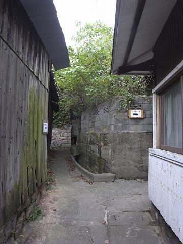 131102shishijima14