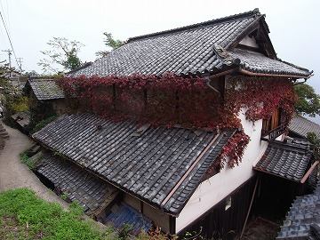 131103takamijima19