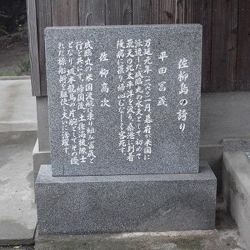131103sanagi9