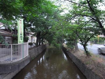 140621yamamoto01