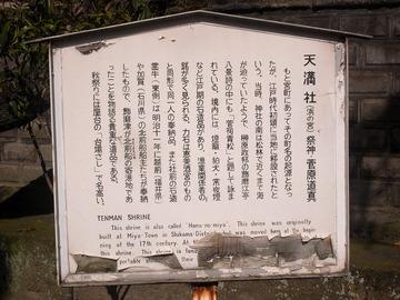100429hamanomiya2