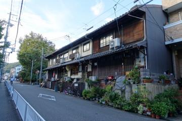 180922kamikashiwanopark3