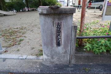 180922kamikashiwanopark6