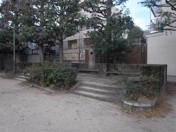 160206murasakinoyanagi3