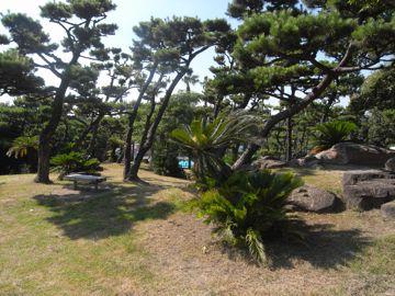 大浜公園 (堺市)