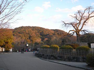 090111maruyama1