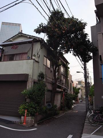 120622shinjuku5